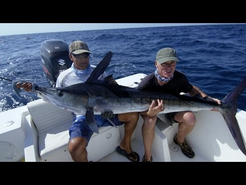 Jeremy Plays Tug of War with a Striped Marlin