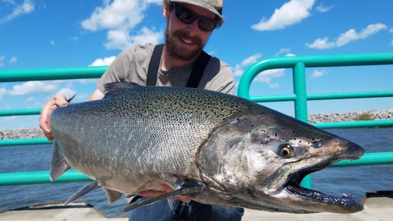 Lake Michigan Pier Fishing King Salmon Youtube