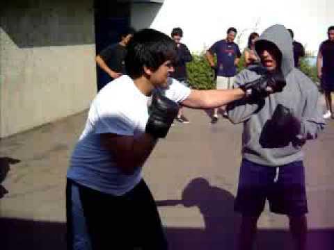 box Hernandez Vs Arquimides