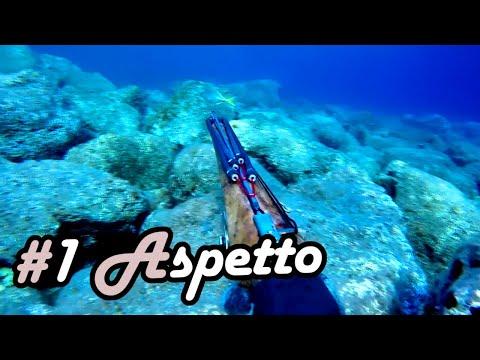 #1 Learn Spearfishing Series - The Aspetto Technique