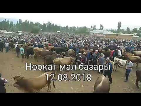 Ноокат мал базары 12.08.2018