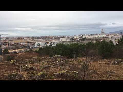 Reykjavik park