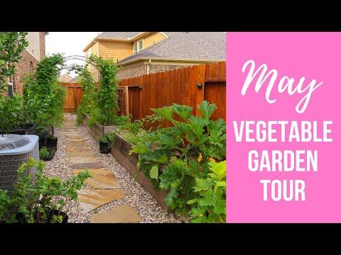 MAY Vegetable Garden Tour | Small Backyard Garden