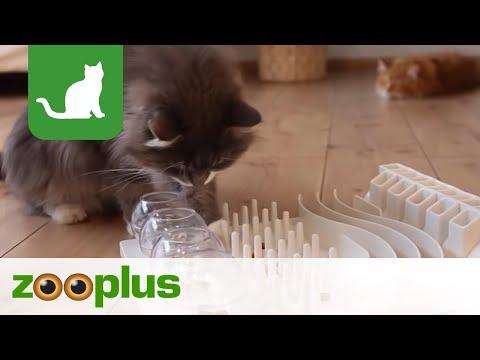 Katzenspielzeug Cat Activity Fun Board | zooplus