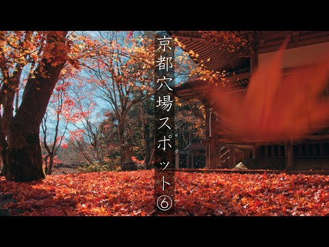 京都の穴場スポット ⑥: A secret spot in Kyoto(Kyoto, Japan)
