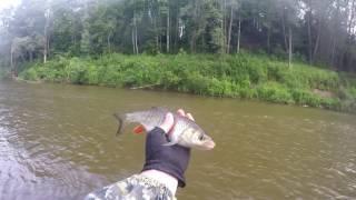 Ловля голавля на малых реках Удмуртии