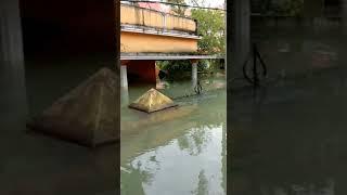 #kerala #flood #2018flood Current Situation in Kerala