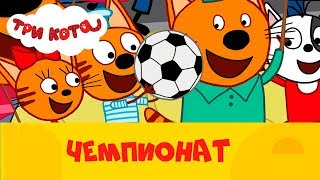 Три кота на СТС Kids | Чемпионат