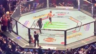 Fight! Fight! Fight! Khabib Nurmagomedov Jump Out of the Ring....