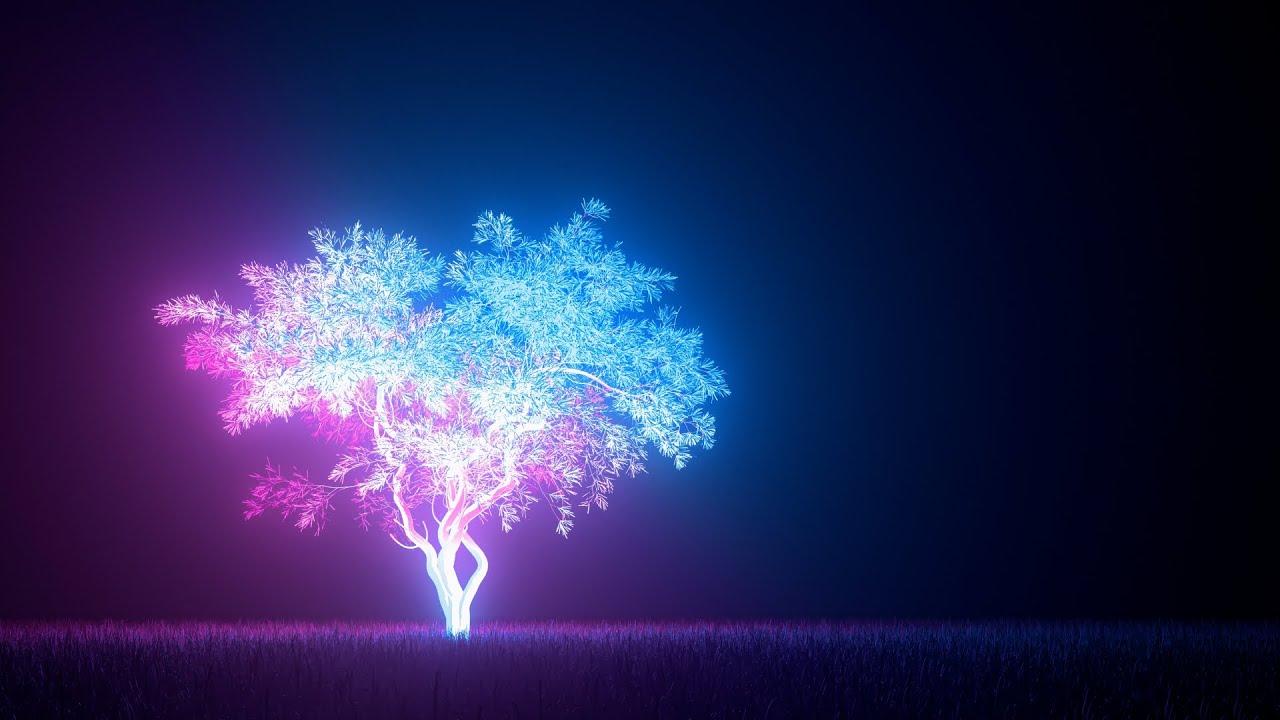 1시간 편안하고 따듯한 수면음악 🌙 풀벌레소리, 잠잘때듣는음악,불면증음악 (Lavender)