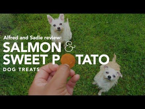 Trader Joe's Salmon & Sweet Potato Dog Treats