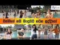 Wasthi Nayi Dance Cover | නයි සින්දුවට නටන සුද්දියෝ