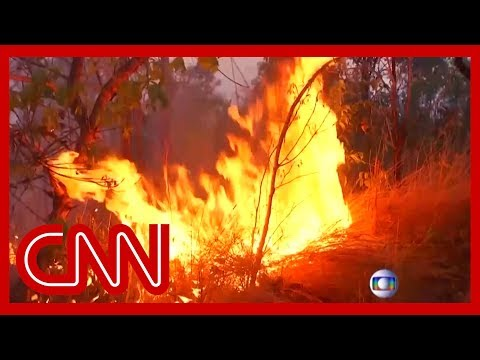 amazon-rainforest-burning-at-record-rate