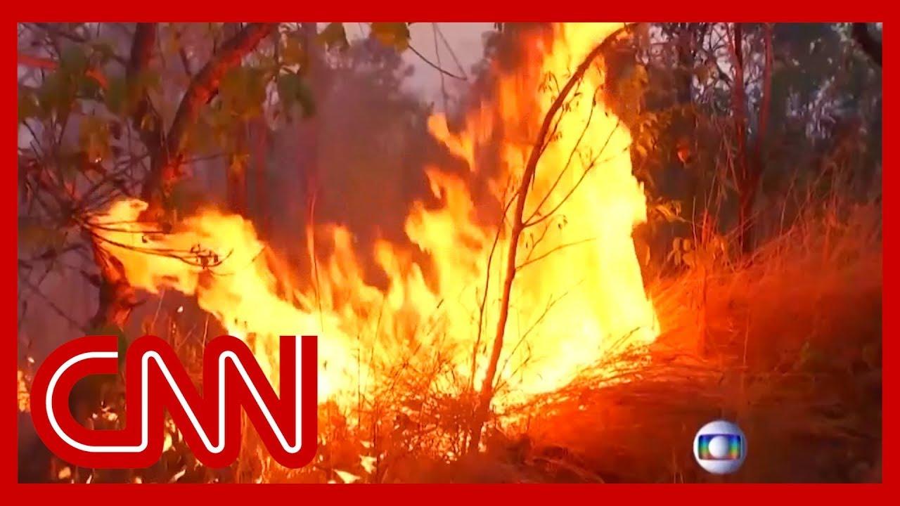 CNN:Amazon rainforest burning at record rate