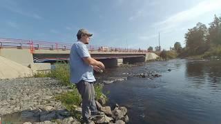 рыбалка Ленинградской области город Приозерск 2019