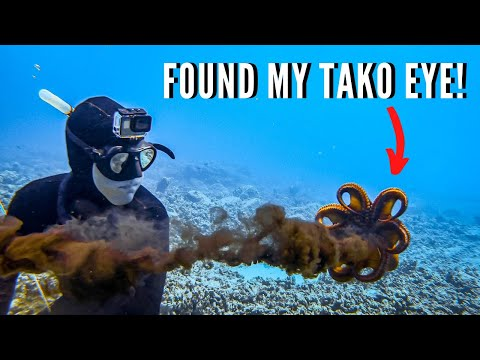 Spearfishing Hawaii EPIC Tako CATCH CLEAN COOK