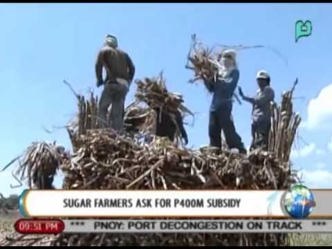 NewsLife: Sugar farmers ask for P400-M subsidy || Sept. 8, 2014