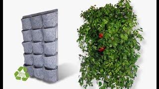 Como Hacer Un Jardin Vertical Paso A Paso Como Hacer Un Jardin
