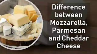 Difference between Mozzarella, Parmesan and Cheddar Cheese   Basic Difference #cheese