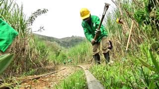 Recuperación Vía Ferrea Cisneros Antioquia TELEMEDELLÍN