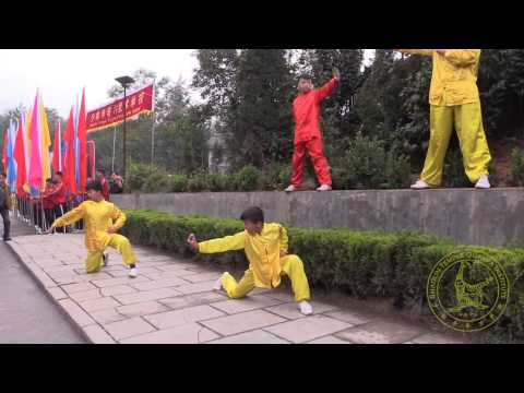 10th Zhengzhou International Shaolin Wushu Festival - Opening Ceremony Summary