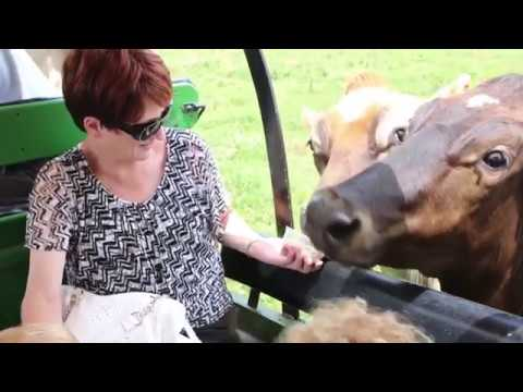 Hershberger's Farm and Bakery | Ohio's Amish Country