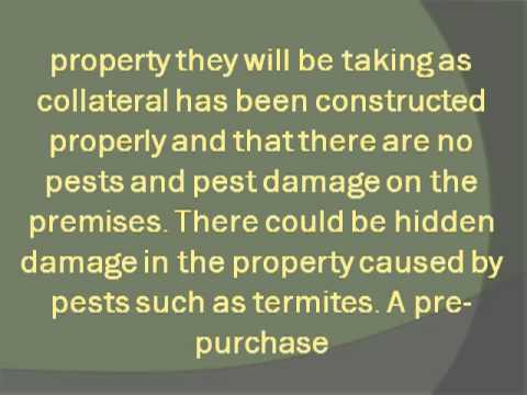 Importance of a Pre Purchase Pest Inspection