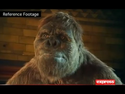 Woh Kya Hai 17 July 2016 - A rare & terrifying creature in Ziarat Part 2 - Express News