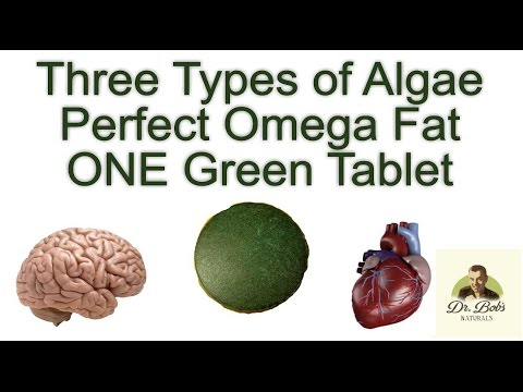 Chlorella/Spirulina/Marine Algae - Perfect Omega-3 Fats