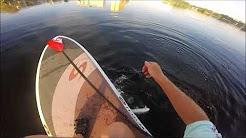 paddleboard fishing miami fl