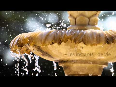 """Bande-annonce de """"Les Mots, saveurs douces et amères"""" aux Éditions Edilivre"""