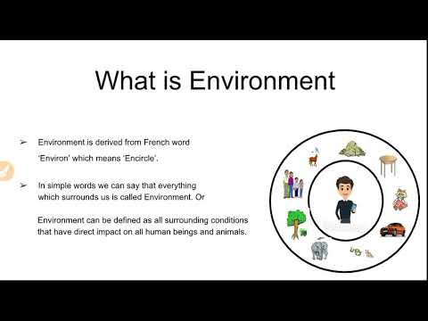 What is Environment And Its Components With MCQ's| Environmental Science| Edusquad