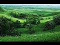Favorite 7 Creed Green Irish Tweed Inspired Shaving Soaps