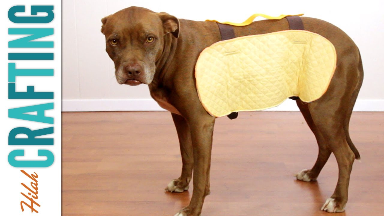 how to make a dog costume