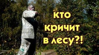 ДАВНО ЗАБРОШЕННЫЙ ДЕТСКИЙ ЛАГЕРЬ И ВОЕННАЯ ЧАСТЬ .СТАЛК.(часть1)/abandoned children's camp in Russia