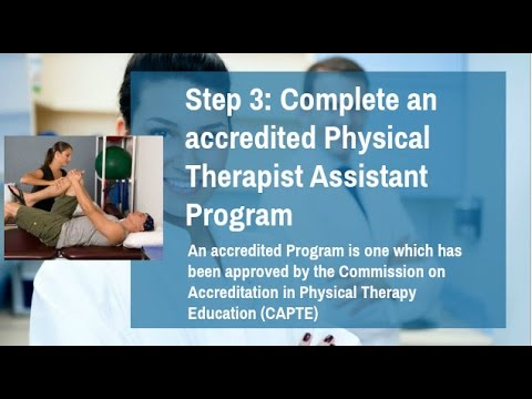 how to become a physical therapist assistant? pta requirements, Human body
