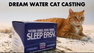 YouTube's First Ever Cat Casting (PRANK VIDEO)