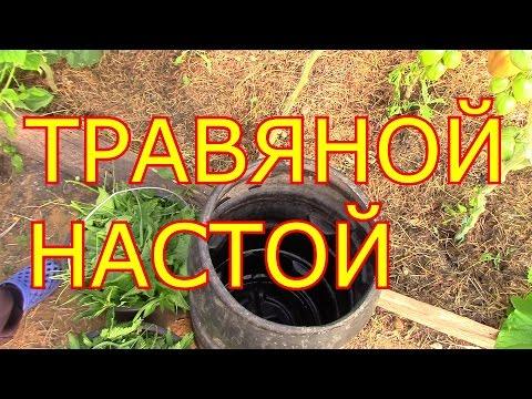 Как приготовить настой травы в бочке. Сайт Садовый мир