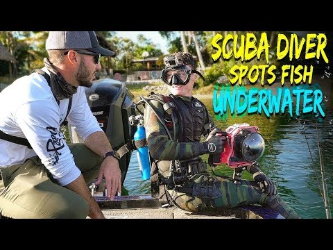 Cheat Codes For Fishing - Scuba Diver Searches UNDERWATER for BIG Fish! (Human Fish Finder!)