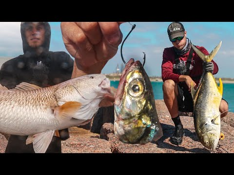 EVERYBODY Was Catching Giant Fish At The Jetty - Secret Bait For Giants...
