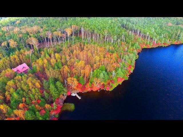 Drone Japan 4k 絶景 ドローン 空撮映像 紅葉 秋の北八ヶ岳 高見石~白駒池 空中遊覧 Autumn Shirakomaike DJI PHANTOM4
