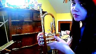 Eye Of The Tiger - Trumpet Cover