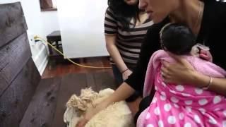 Съемка новорожденных детей  Фотосессия в студии(, 2014-03-26T17:08:14.000Z)