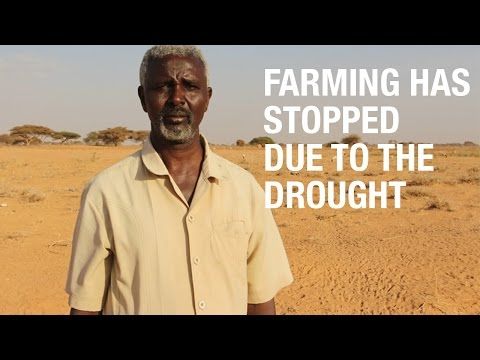 'Farming has stopped for over a year because of the drought'   Hussein, Somalia