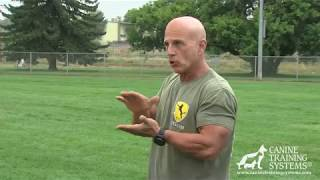 Training Police and Military Working Dog Helpers with Franco Angelini Part 1 The Foundation