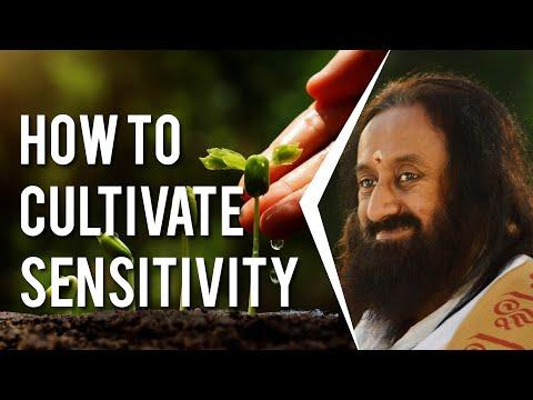 How Can Sensitivity Be Inculcated In Someone?   Gurudev Sri Sri Ravi Shankar