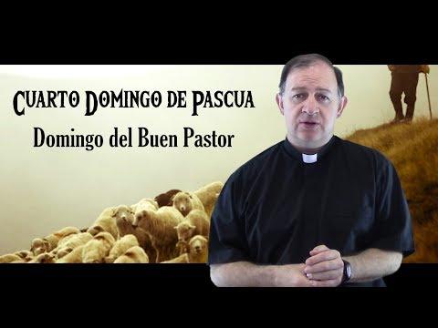 Cuarto Domingo de Pascua - Ciclo C - Jesús el Buen Pastor