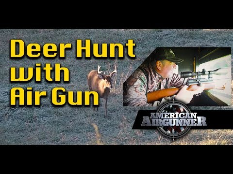 Airgun Deer Hunting With A Big Bore Air Rifle : American Airgunner TV