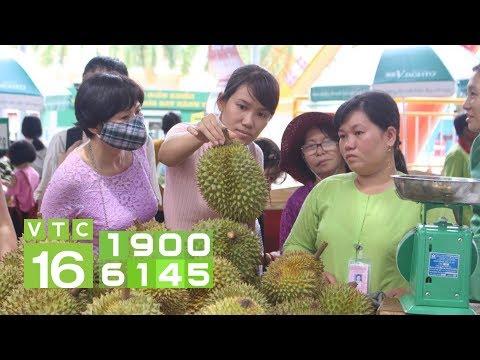 Vì sao nông sản khó vào siêu thị, cứ phải xuất Trung Quốc?   VTC16