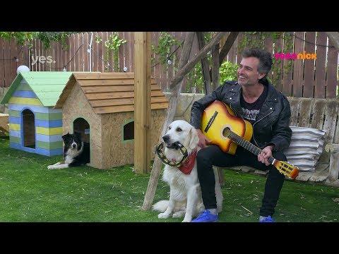 בית הכלבים 3: הרגעים הגדולים - אריק חץ מחפש השראה   טין ניק